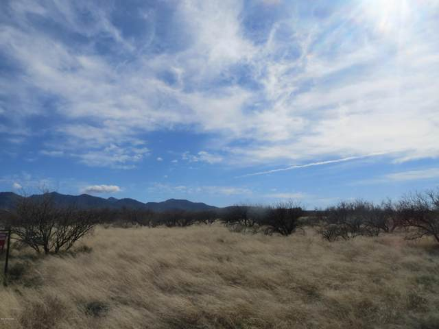W Thunder Pass Road #65, Benson, AZ 85602 (MLS #22100920) :: The Luna Team