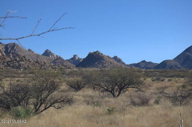 E Diamondback Road #209, St. David, AZ 85630 (#22101097) :: Long Realty Company