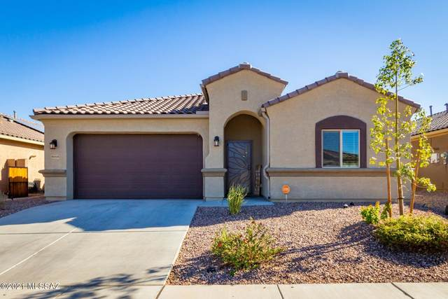 9668 N Texas Ebony Lane, Marana, AZ 85653 (#22101281) :: Kino Abrams brokered by Tierra Antigua Realty