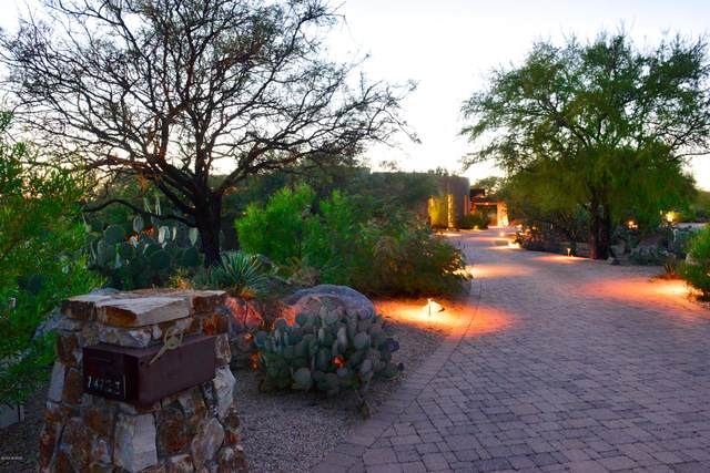14123 N Hohokam Village Place, Oro Valley, AZ 85755 (MLS #22101299) :: The Property Partners at eXp Realty