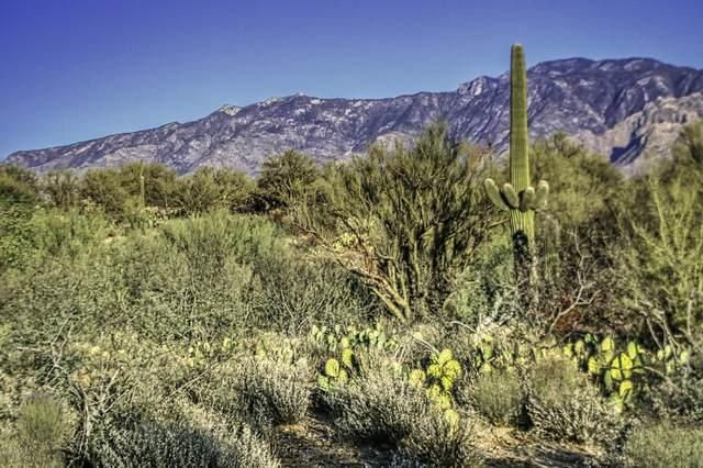 1854 W Tangerine Road, Oro Valley, AZ 85755 (#22101473) :: AZ Power Team   RE/MAX Results
