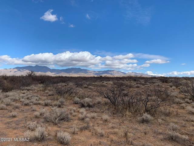 S Covered Wagon -, Willcox, AZ 85643 (#22101640) :: Long Realty - The Vallee Gold Team