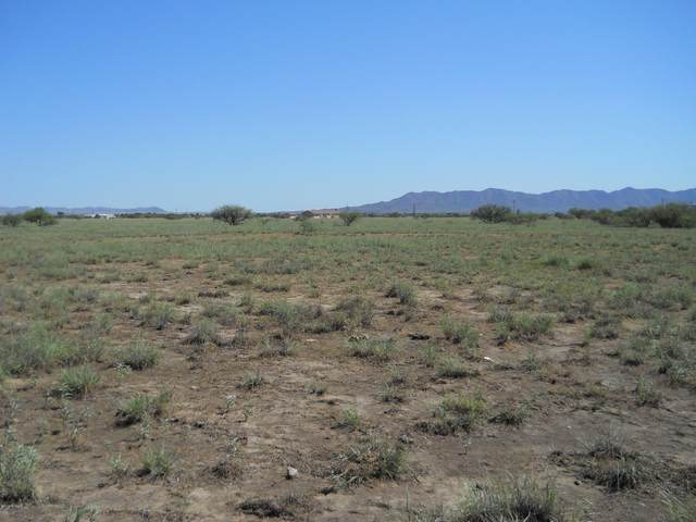TBD S Haskell Avenue, Willcox, AZ 85643 (#22101873) :: Long Realty - The Vallee Gold Team
