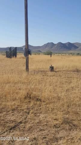 563 Acres Sulphur Springs Road, Willcox, AZ 85643 (#22101988) :: Tucson Real Estate Group