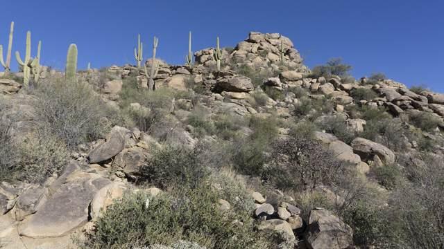 14421 N Phinny Rock Place N #48, Marana, AZ 85658 (#22102191) :: Tucson Real Estate Group