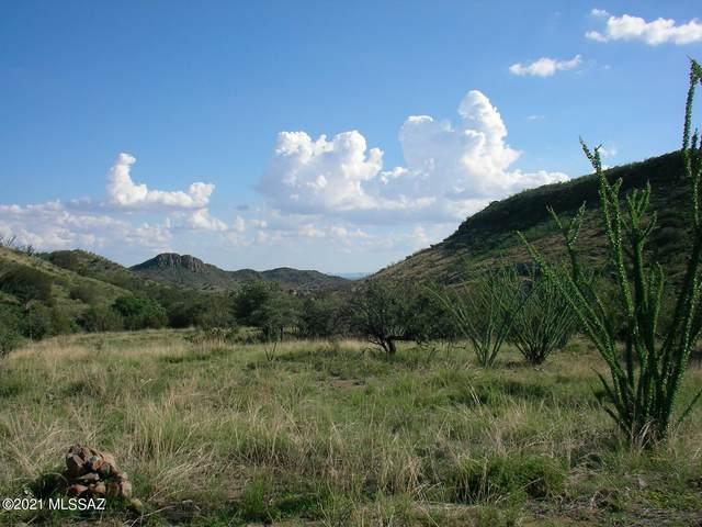 TBD Montezuma Well Road 163/5, Tubac, AZ 85646 (#22102279) :: Long Realty - The Vallee Gold Team