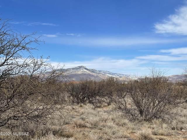 3258 W Thunder Pass Road, Benson, AZ 85602 (MLS #22102381) :: The Luna Team