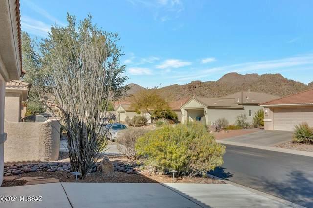 13465 N Holly Grape Drive, Marana, AZ 85658 (#22103328) :: Long Realty - The Vallee Gold Team