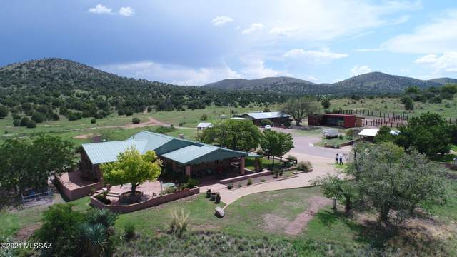 101 E Papago Springs Road, Elgin, AZ 85611 (#22103450) :: Long Realty - The Vallee Gold Team