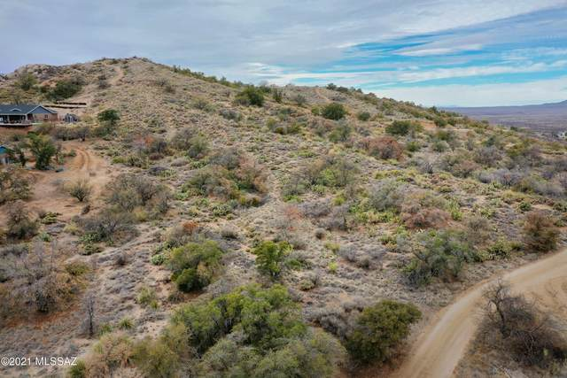 Lot 1 W Neal St, Oracle, AZ 85623 (MLS #22103687) :: The Property Partners at eXp Realty