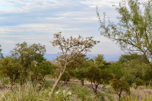 560 N Viento Drive Lot #3, Oracle, AZ 85623 (MLS #22103719) :: The Property Partners at eXp Realty