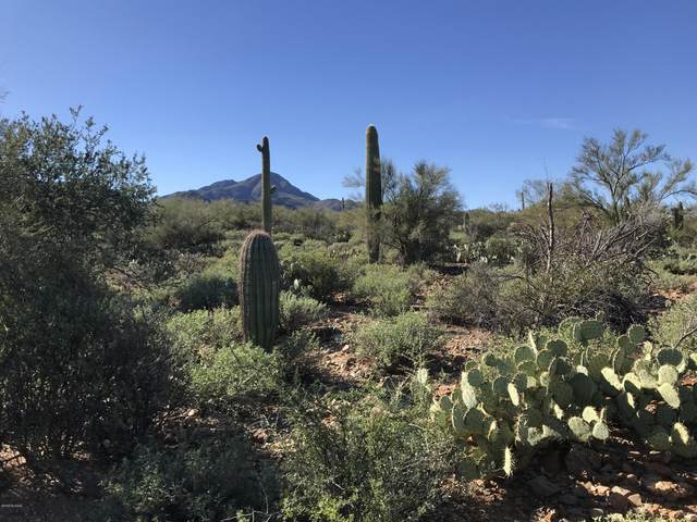 N N Ave Dos Vistas B, Tucson, AZ 85745 (MLS #22104017) :: The Property Partners at eXp Realty