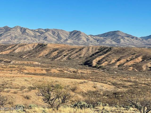 TBD Calle Mandarina 11/1, Rio Rico, AZ 85648 (MLS #22104145) :: The Property Partners at eXp Realty
