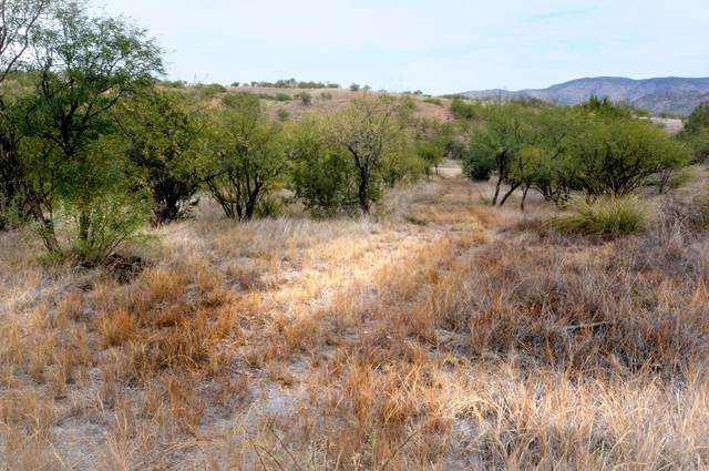 Lot 4 Tanglehead ., Patagonia, AZ 85624 (#22104157) :: The Local Real Estate Group | Realty Executives