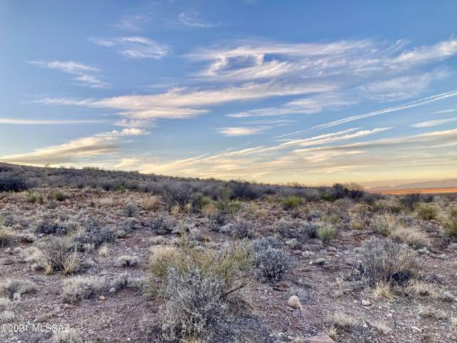 000 E Reindeer Lane, Willcox, AZ 85643 (#22104240) :: Tucson Property Executives