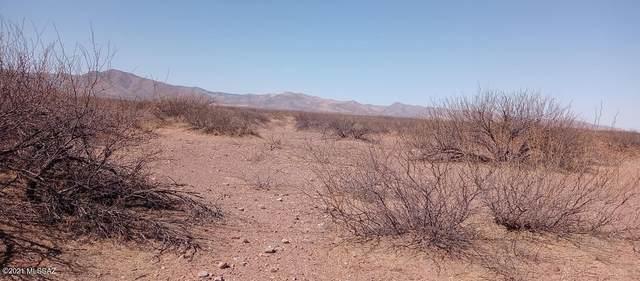 000 Off Frontier Road 3-4, Mc Neal, AZ 85617 (#22105332) :: Keller Williams
