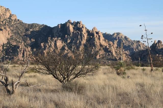 Lot 146 E Badger Trail #146, St. David, AZ 85630 (#22105396) :: Long Realty Company