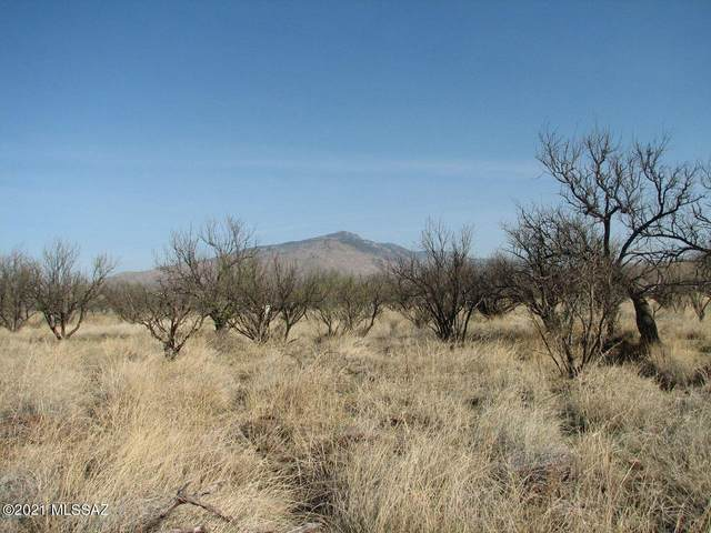 4.1 Acres N Diana Drive, Benson, AZ 85602 (MLS #22105504) :: The Property Partners at eXp Realty
