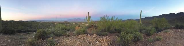 6945 W Wasson Vista Drive, Tucson, AZ 85745 (#22105543) :: Kino Abrams brokered by Tierra Antigua Realty