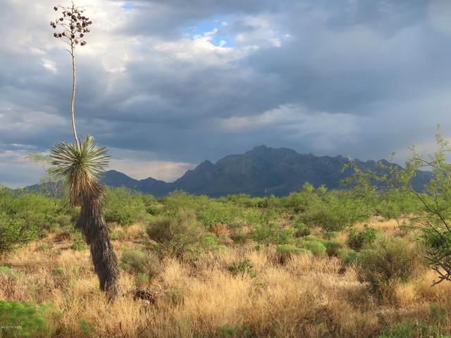 20 ac S B Lee Lane #0, Portal, AZ 85632 (#22105835) :: Tucson Property Executives