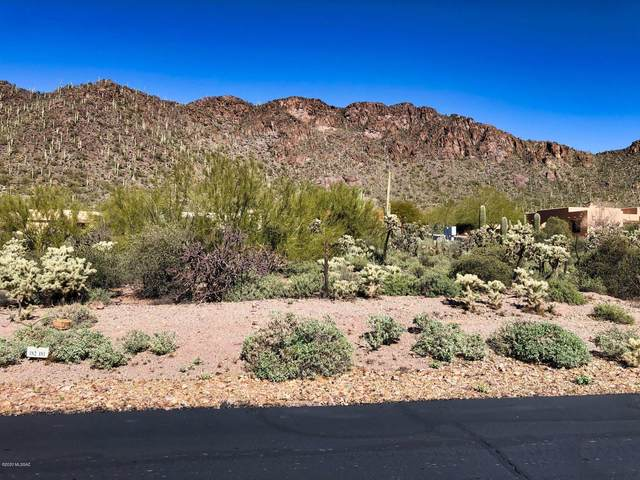 2081 S Double K Place #181, Tucson, AZ 85713 (MLS #22105907) :: The Property Partners at eXp Realty