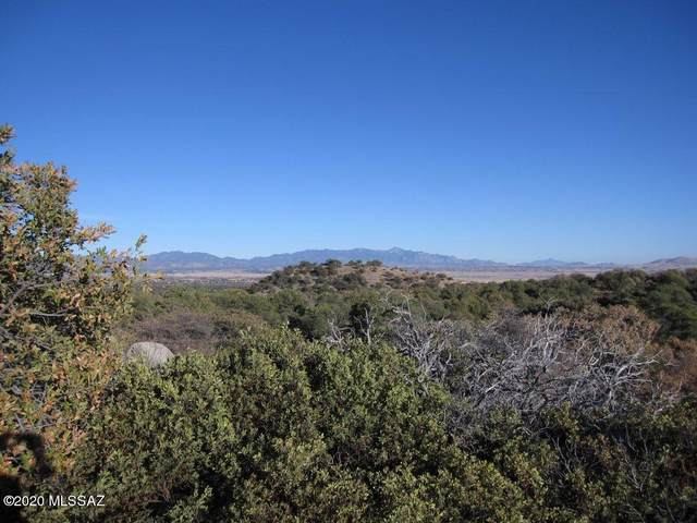 Bonanza & Pocahontas Road 4 & 7, Patagonia, AZ 85624 (#22105961) :: The Local Real Estate Group | Realty Executives
