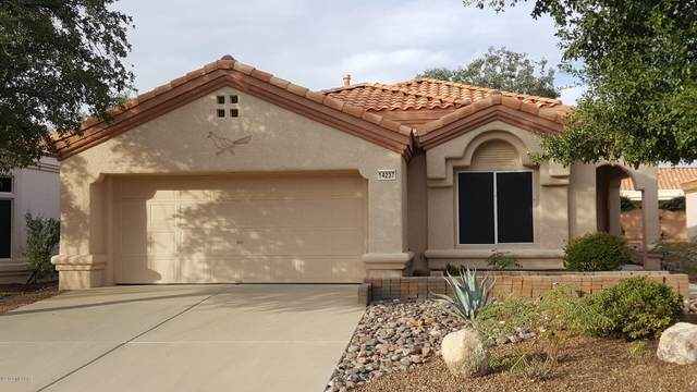 14237 N Cirrus Hill Drive, Oro Valley, AZ 85755 (MLS #22106032) :: The Property Partners at eXp Realty
