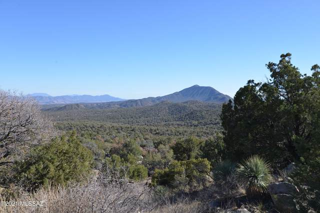 00 Off Fr4720 Old Duquesne Area, Patagonia, AZ 85624 (#22106112) :: Tucson Real Estate Group