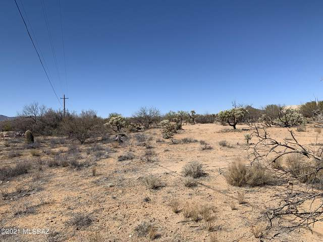 TBD W Camino Del Paloma N/A, Sahuarita, AZ 85629 (#22106612) :: AZ Power Team