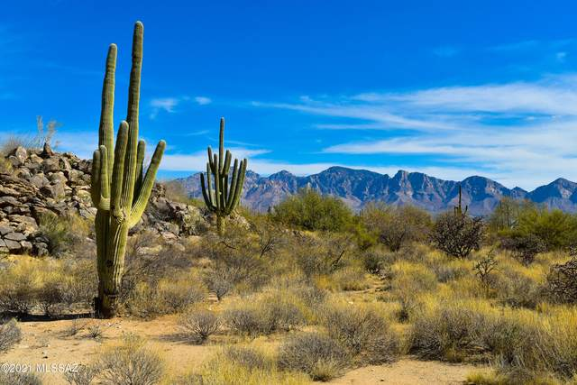 14556 Blazing Canyon Drive #211, Oro Valley, AZ 85755 (#22106887) :: Tucson Real Estate Group