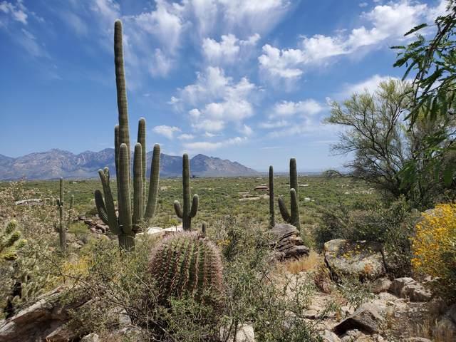 3855 W Conrads Way, Marana, AZ 85658 (#22106932) :: Long Realty - The Vallee Gold Team