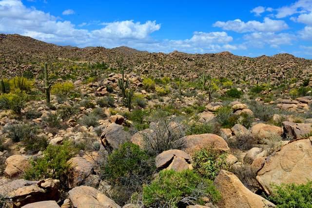 1455 Tortolita Mountain Circle #278, Oro Valley, AZ 85755 (#22107507) :: Tucson Real Estate Group
