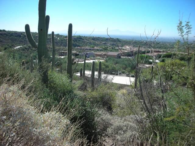 2590 E Calle Sin Ruido #162, Tucson, AZ 85718 (#22107880) :: The Local Real Estate Group | Realty Executives