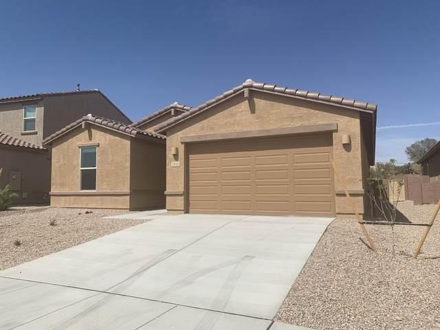 2850 W Shannon Ridge Road, Tucson, AZ 85742 (#22108418) :: The Dream Team AZ