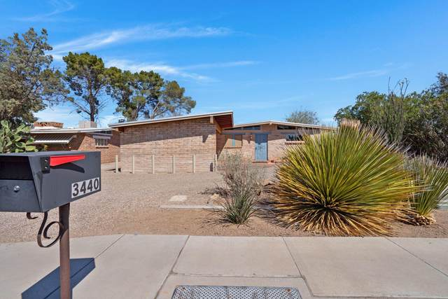 3440 N Mountain Avenue, Tucson, AZ 85719 (MLS #22108479) :: The Property Partners at eXp Realty