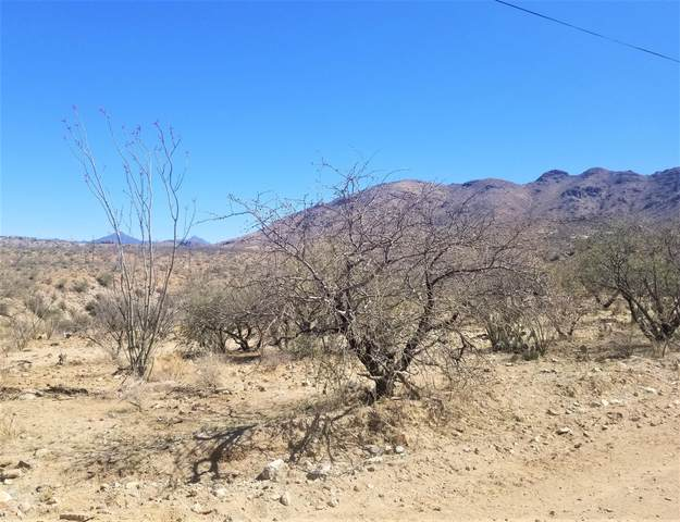 1678 Ave Calamar 112/17, Rio Rico, AZ 85648 (#22108560) :: Tucson Real Estate Group