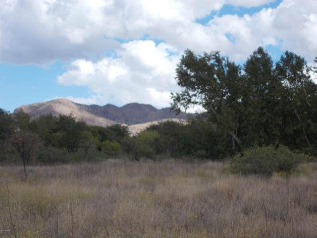 E Sunrise Drive, Pearce, AZ 85625 (MLS #22108822) :: The Property Partners at eXp Realty