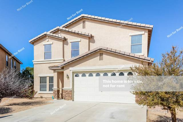 13018 N Yellow Orchid Drive, Oro Valley, AZ 85755 (#22108841) :: AZ Power Team