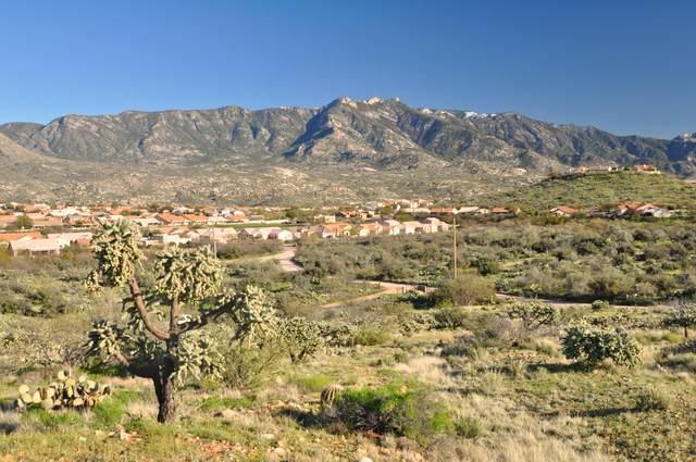0 E Horseshoe Bend Road, Saddlebrooke, AZ 85739 (MLS #22109250) :: My Home Group