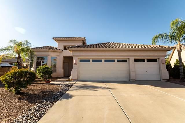 9183 N Treasure Mountain Drive, Tucson, AZ 85742 (MLS #22109310) :: My Home Group