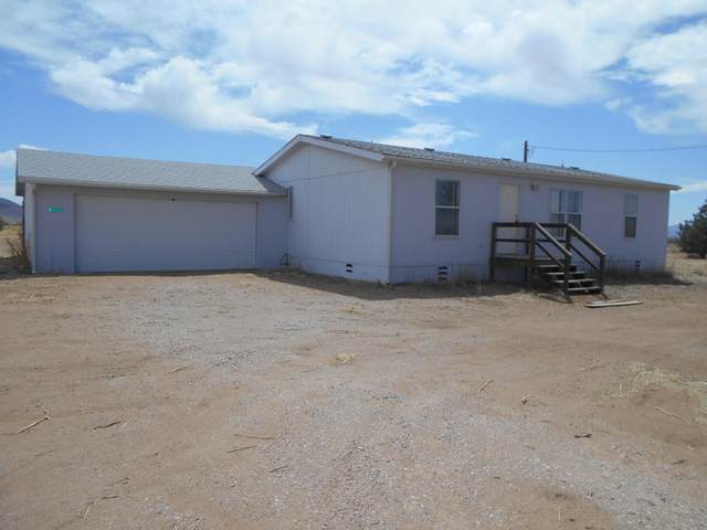 7133 E Apache Drive, Pearce, AZ 85625 (MLS #22109312) :: The Property Partners at eXp Realty