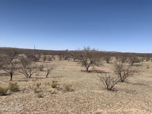 15700 W Crooked Sky Road #140, Arivaca, AZ 85601 (#22109446) :: The Josh Berkley Team