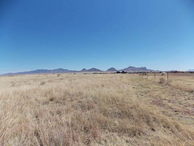 00 Old Country Lane #2, Sonoita, AZ 85637 (#22109510) :: Long Realty - The Vallee Gold Team