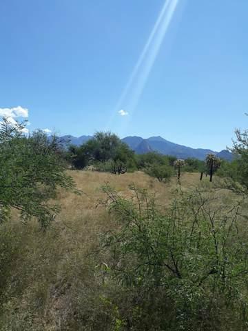 1760 W Eagle Way Q, Amado, AZ 85645 (#22109655) :: Gateway Realty International