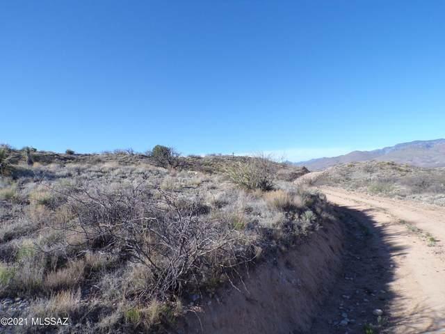 36.13 ac Four Feathers Loop Lot 63, Willcox, AZ 85643 (MLS #22109724) :: The Luna Team