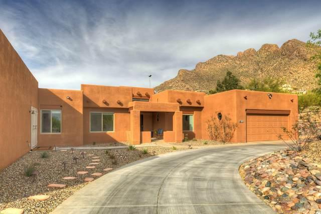 355 E Newport Drive, Tucson, AZ 85704 (MLS #22109805) :: The Property Partners at eXp Realty