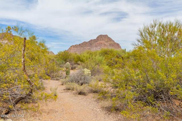 3309 S Prism Sky Drive, Tucson, AZ 85713 (MLS #22109814) :: The Property Partners at eXp Realty
