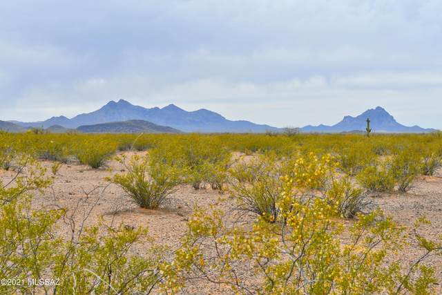 17530 W Whitewing Way, Marana, AZ 85653 (MLS #22109935) :: The Property Partners at eXp Realty