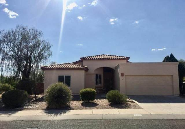 501 E Wagon Bluff Drive, Tucson, AZ 85704 (MLS #22109968) :: The Property Partners at eXp Realty