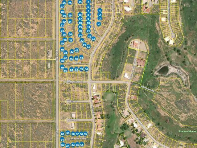 66 Lots in Sunsites Village -, Pearce, AZ 85625 (MLS #22109989) :: The Property Partners at eXp Realty